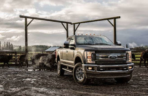 Ford F250s for Sale